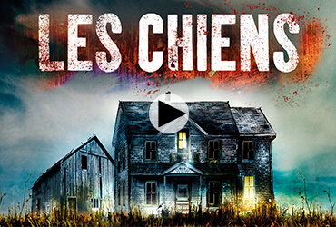 Image de l'article «Découvrez Les Chiens, un roman coup de poing!»