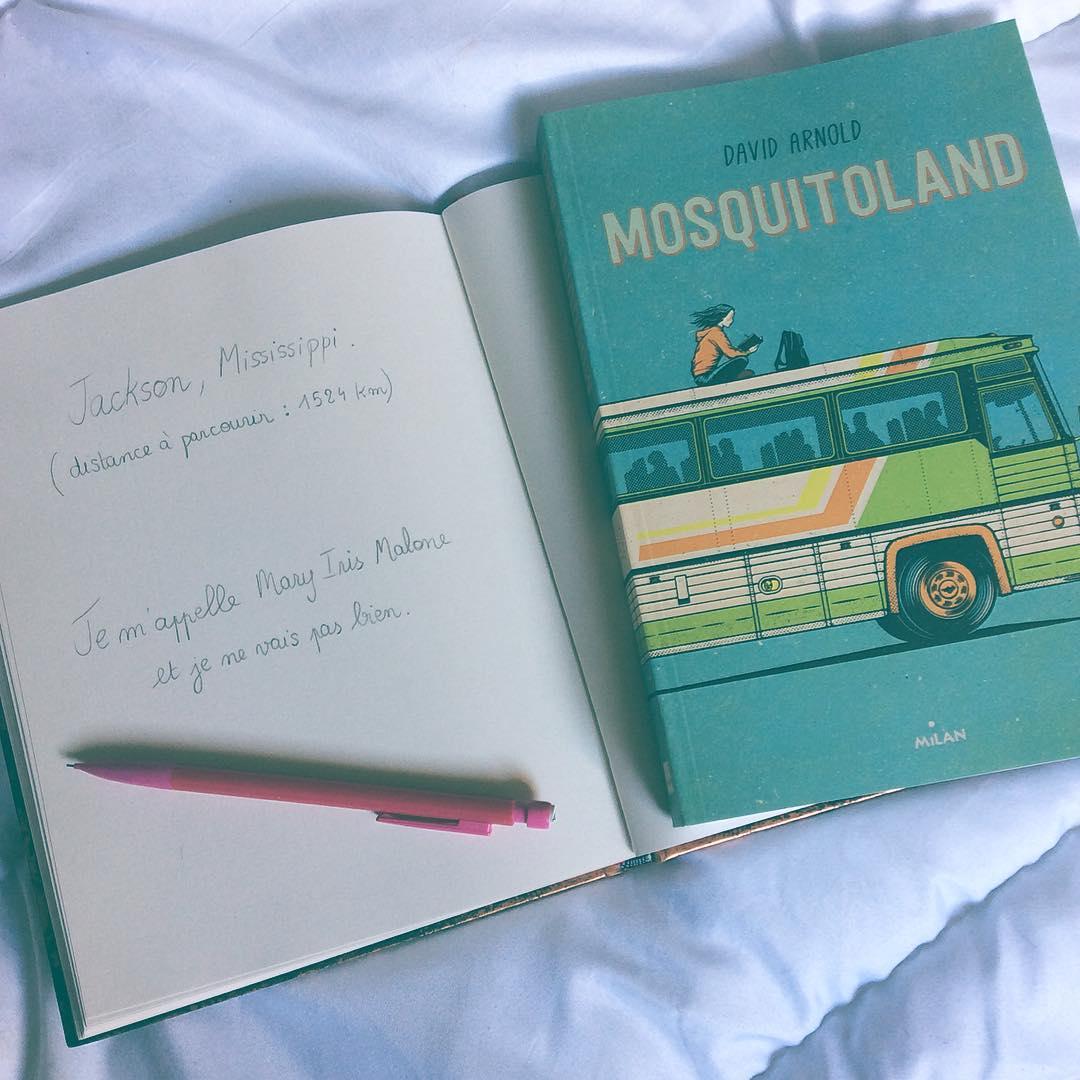 Image de l'article «Mosquitoland, un road trip épatant!»